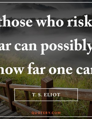 those-who-risk-going-too-far