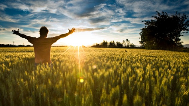 Person standing in an open field with the sun shining.