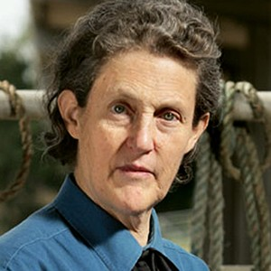 A photograph of Temple Grandin.