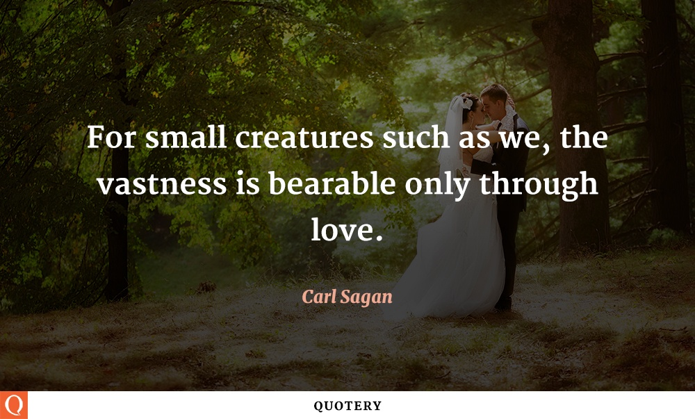 """For small creatures such as we, the vastness is bearable only through love."" — Carl Sagan"
