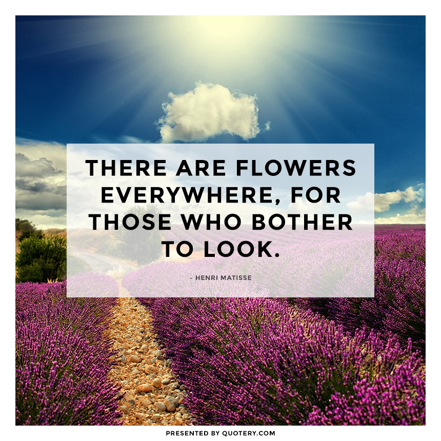 """There are flowers everywhere, for those who bother to look."" — Henri Matisse"