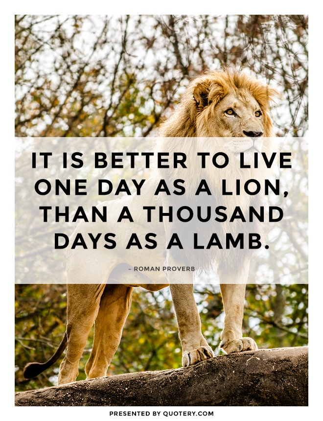 """It is better to live one day as a lion, than a thousand days as a lamb."" — Roman Proverb"