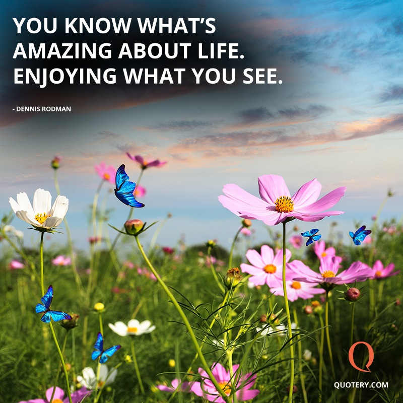 """""""You know what's amazing about life. Enjoying what you see."""" — Dennis Rodman"""