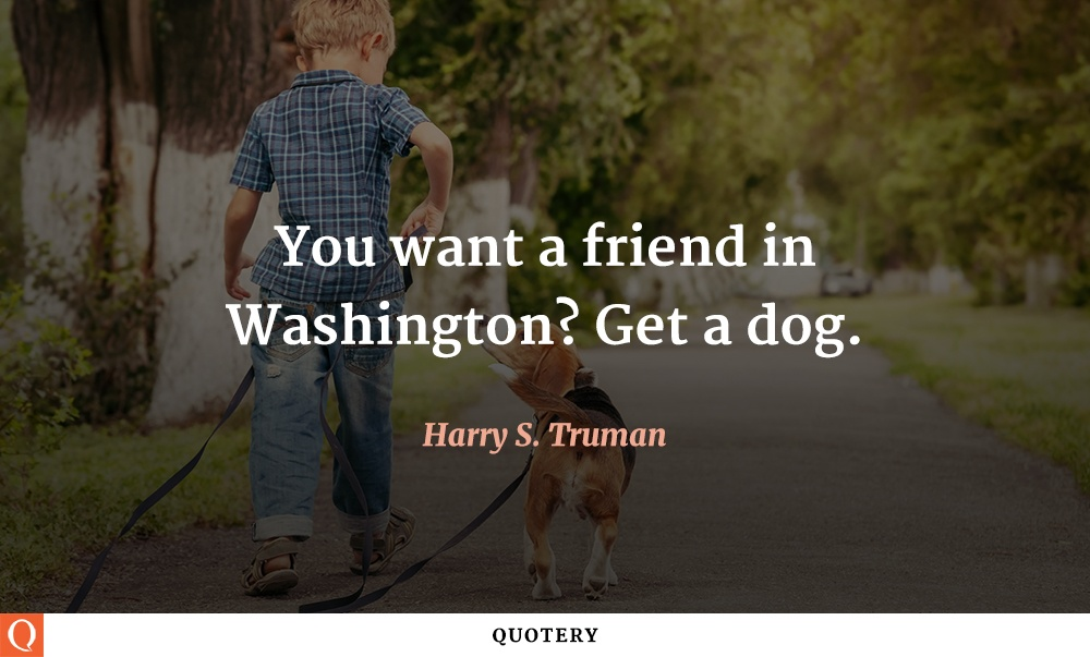 """You want a friend in Washington? Get a dog."" — Harry S. Truman"