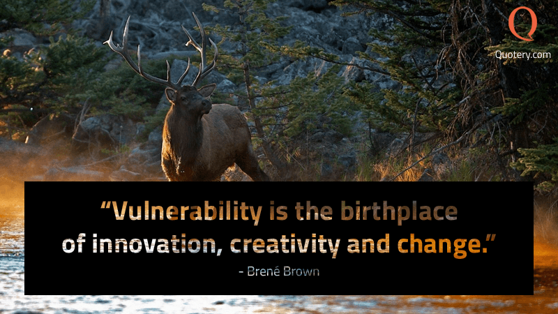 """""""Vulnerability is the birthplace of innovation, creativity and change."""" — Brené Brown"""