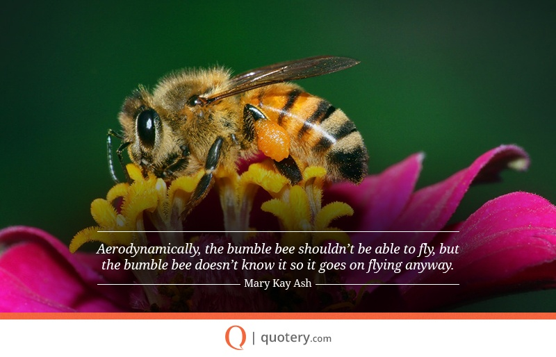 """Aerodynamically, the bumblebee shouldn't be able to fly, but the bumblebee doesn't know that so it goes on flying anyway."" — Mary Kay Ash"