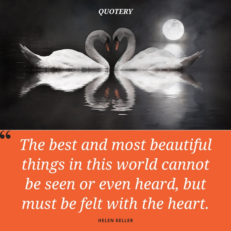 """The best and most beautiful things in the world cannot be seen nor even touched, but just felt in the heart."" — Anne Sullivan"