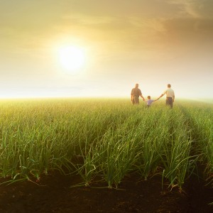 Life symbolized by three generations of a family on a farm field.