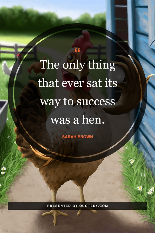 """The only thing that ever sat its way to success was a hen."" — Sarah Brown"
