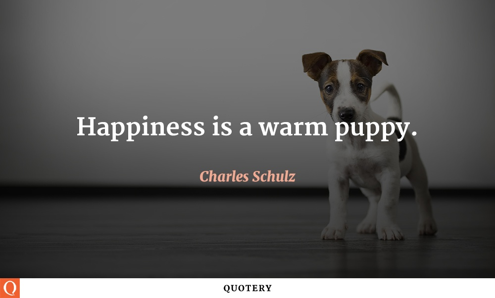"""Happiness is a warm puppy."" — Charles Schulz"