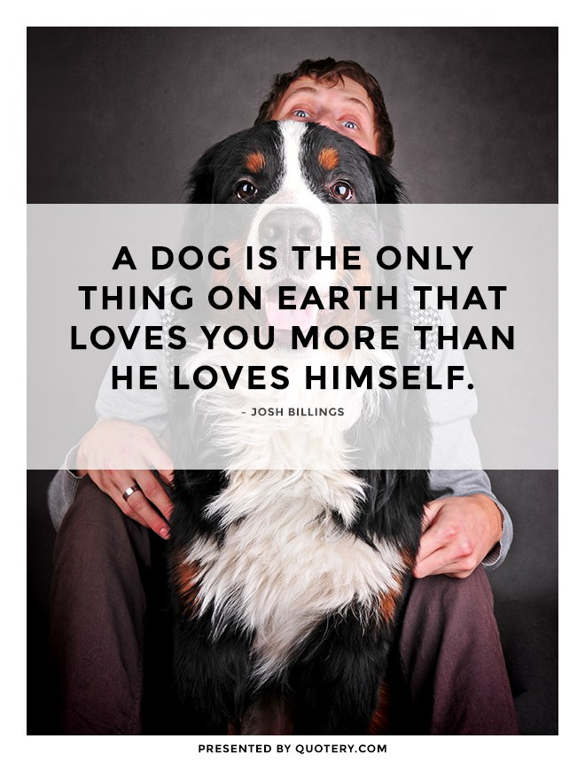 """A dog is the only thing on earth that loves you more than he loves himself."" — Josh Billings"