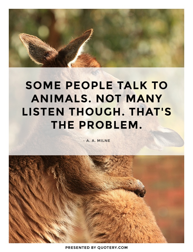 """""""Some people talk to animals. Not many listen though. That's the problem."""" — A. A. Milne"""