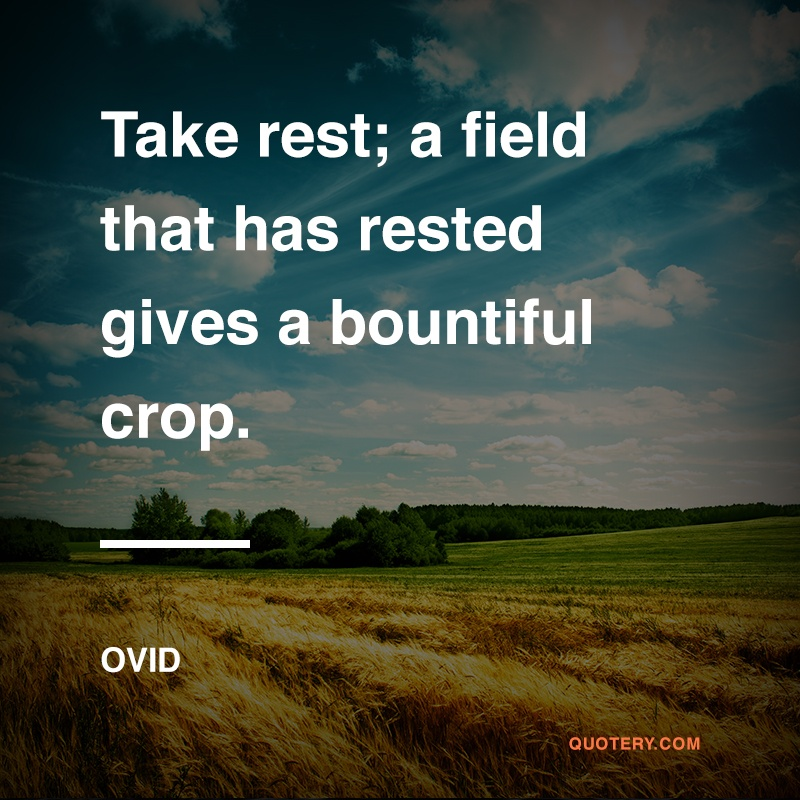 """Take rest; a field that has rested gives a bountiful crop."" — Ovid"