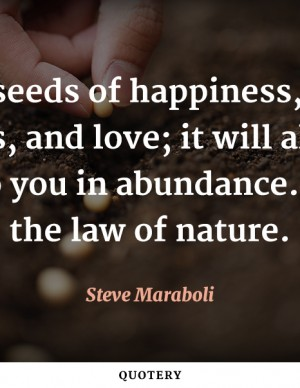 seeds-of-happiness-hope-success-love